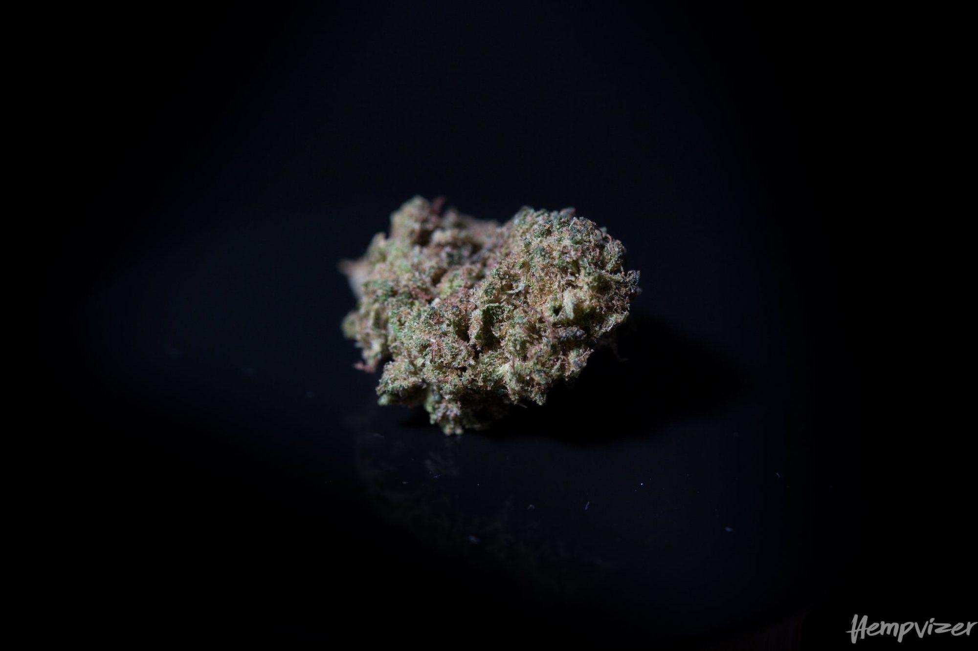 CBD Blüten CBD 9% Hempvizer 2